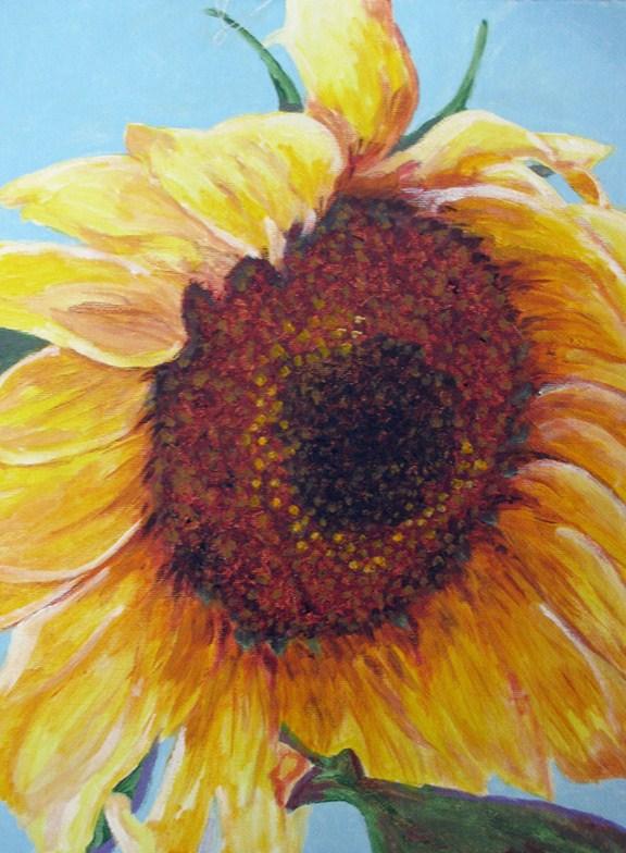 """""""Sunflower"""" original fine art by Nan Johnson"""