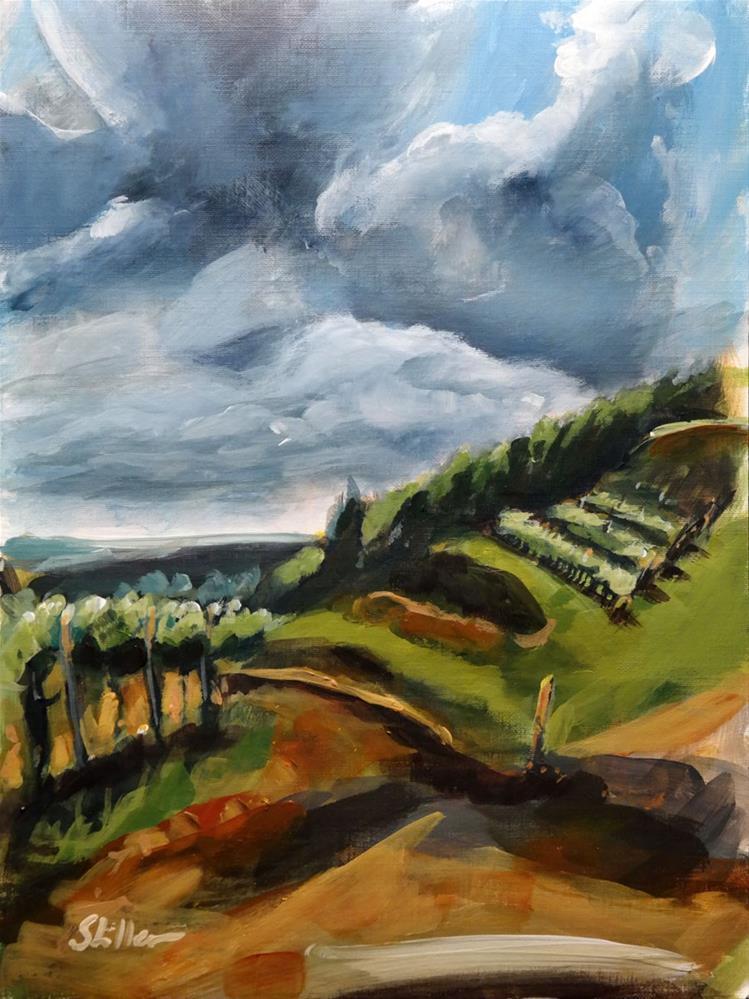 """1752 Le Volpi Thunderstorm"" original fine art by Dietmar Stiller"