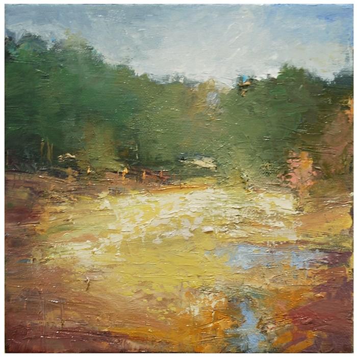 """Ravine, late spring, mid afternoon"" original fine art by Steven Goodman"