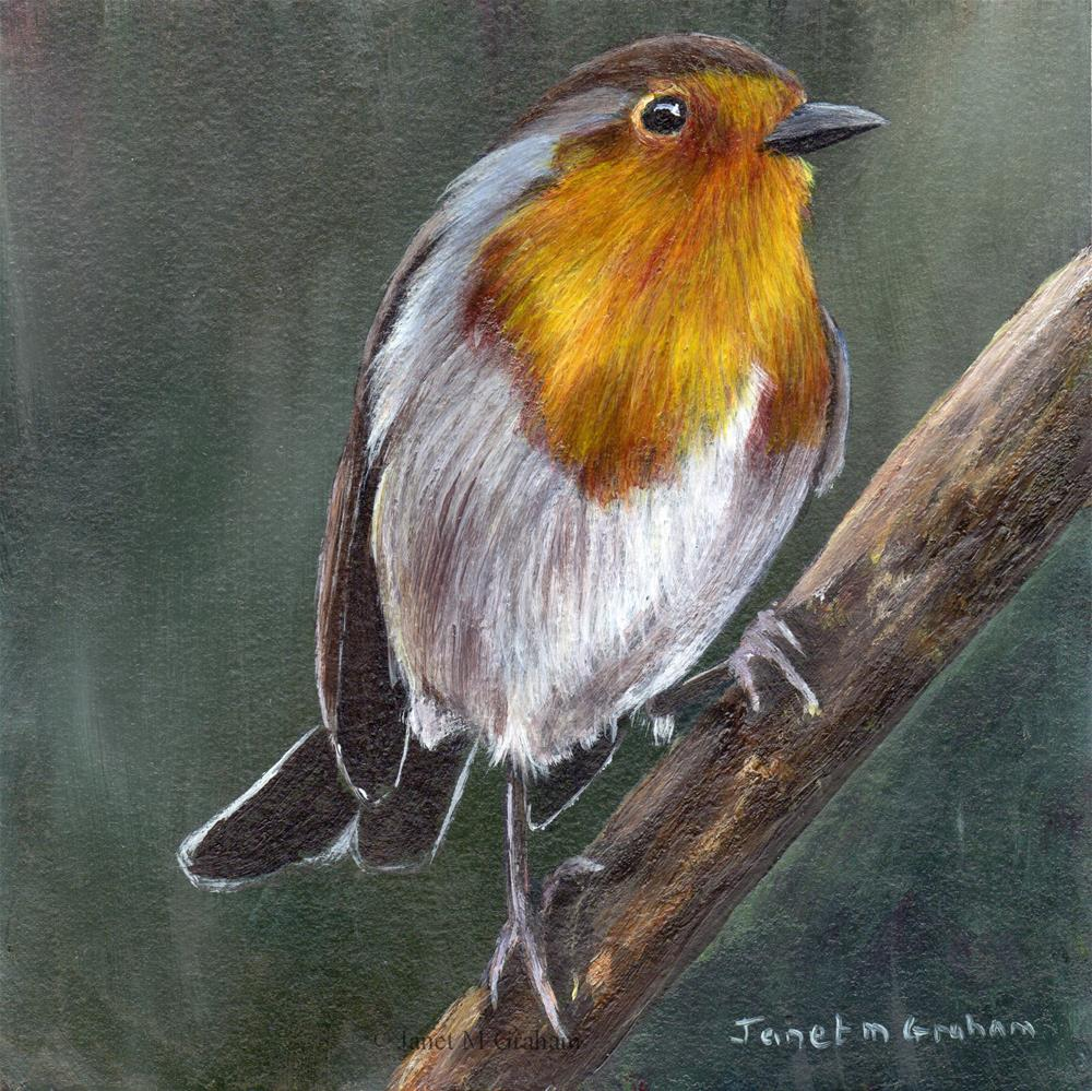 """Robin No 12"" original fine art by Janet Graham"