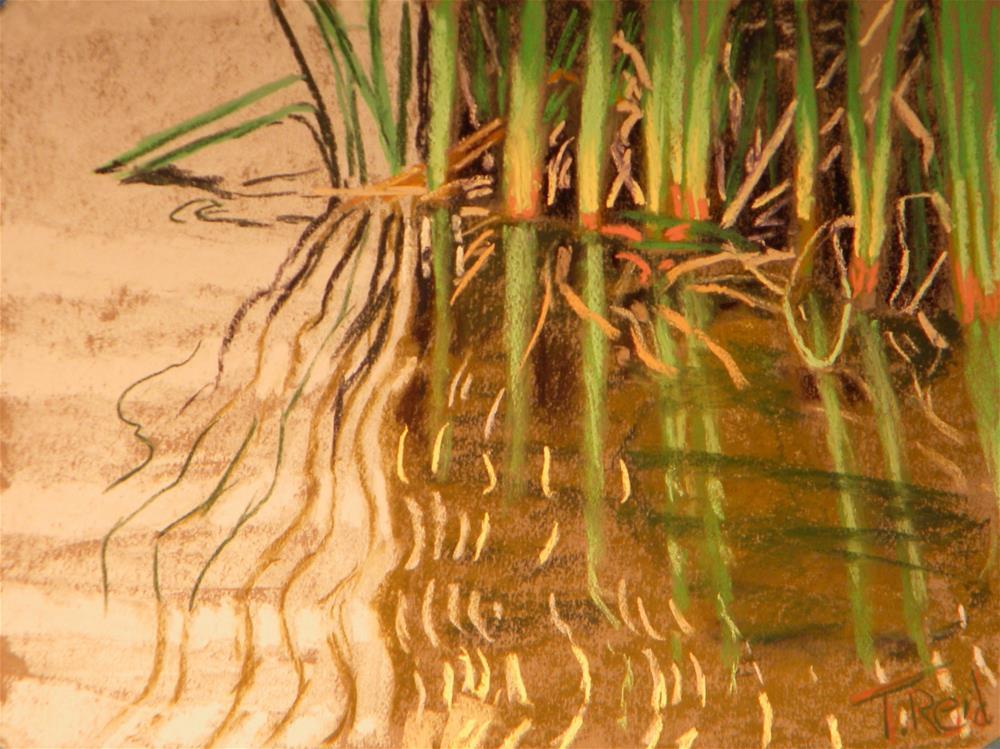 """""""Reed patterns """" original fine art by Toby Reid"""