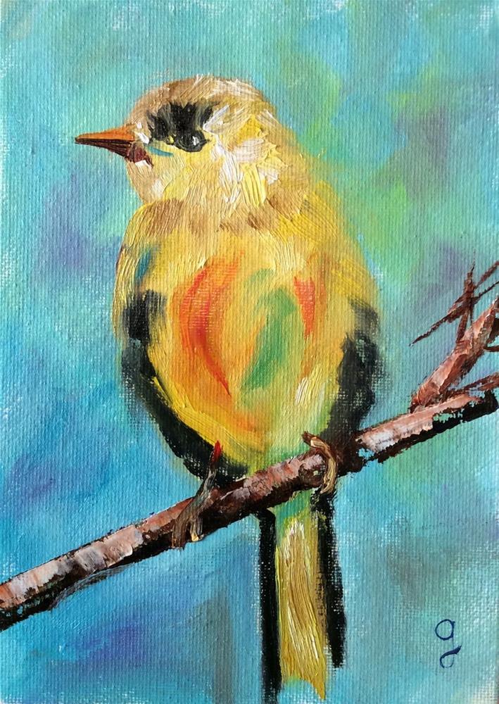 """""""Gold Finch"""" original fine art by Gayle Lambeth"""