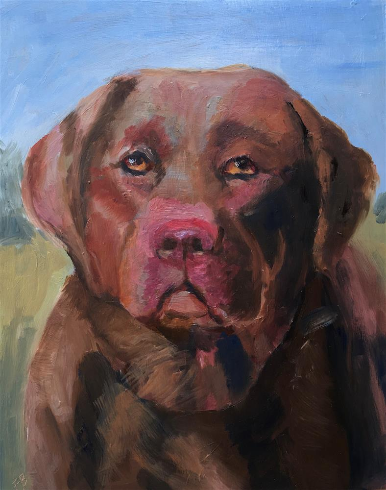 """""""072 Chocolate Lab"""" original fine art by Fred Bell"""