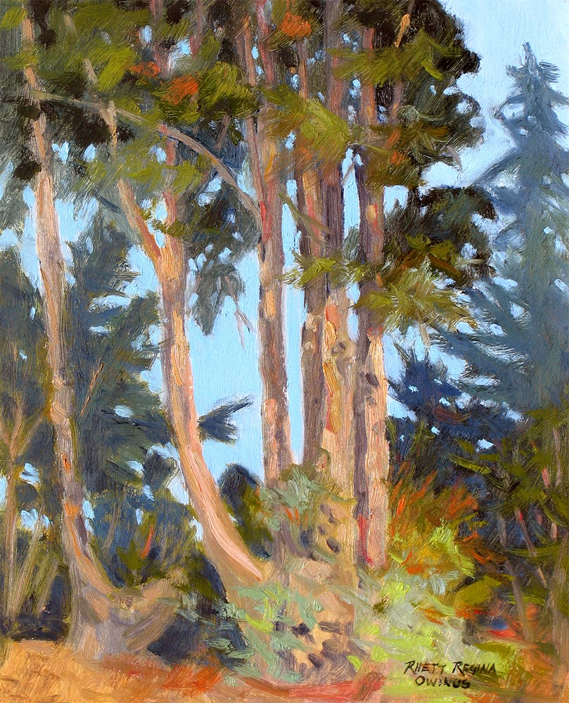 """Eucalyptus Trees"" original fine art by Rhett Regina Owings"