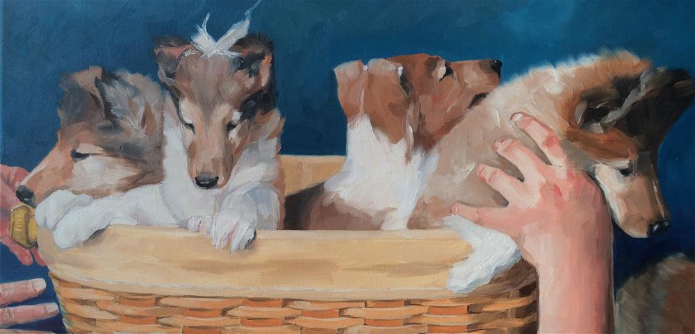 """An Arrangement of Collies"" original fine art by Carol Stickley"