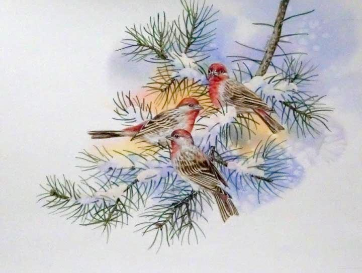 """Rosy Finches"" original fine art by Jean Pierre DeBernay"