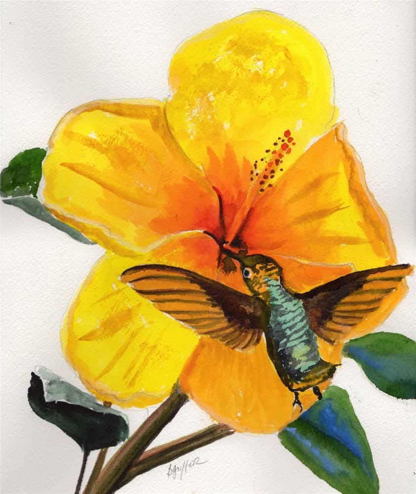 """""""Hibiscus and Hummingbird"""" original fine art by Bunny Griffeth"""