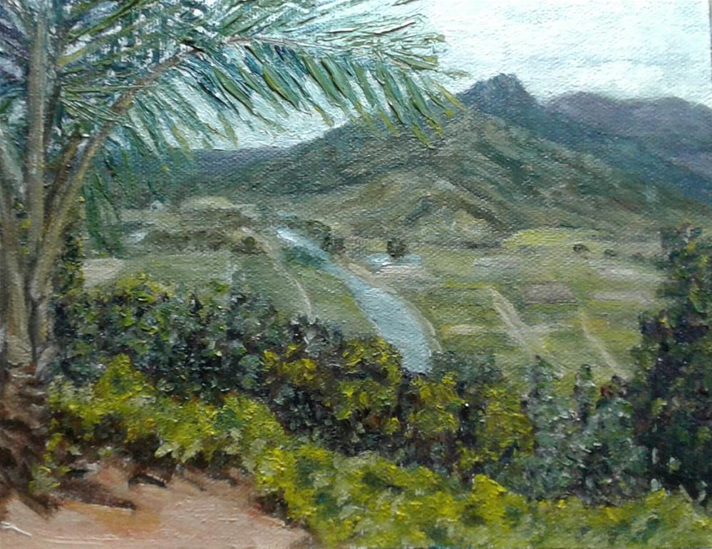 """Taro Fields"" original fine art by Candi Hogan"