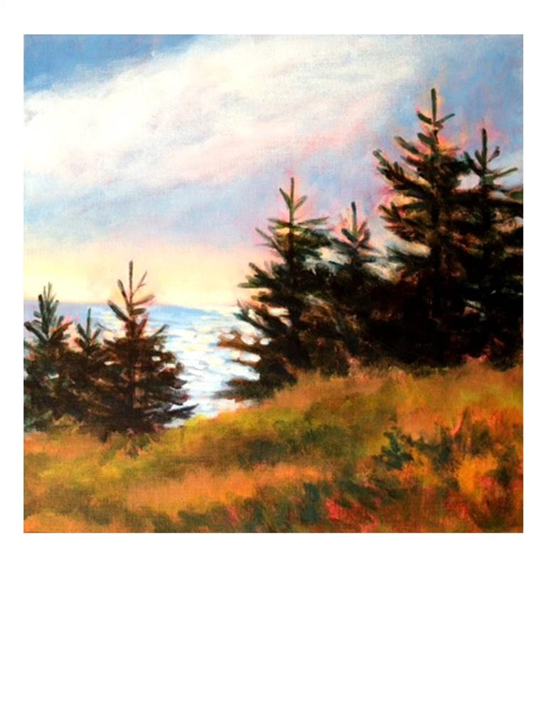 """""""Late Afternoon on Monhegan"""" original fine art by Suzanne Woodward"""