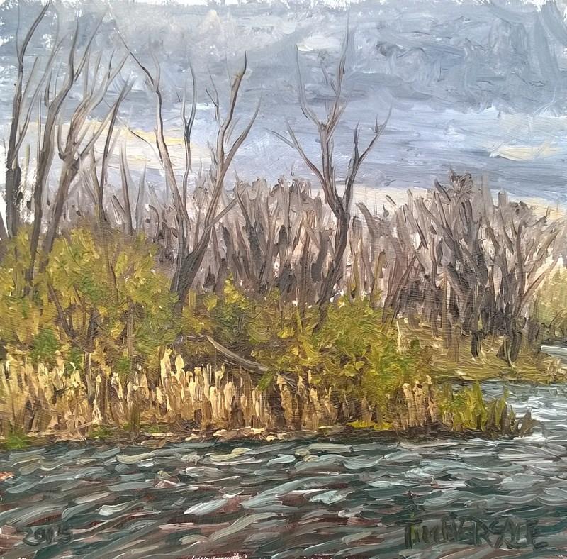 """Cloudy Day Lake Boltz"" original fine art by timothy eversole"
