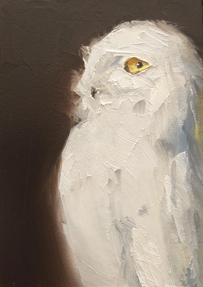 """Snowy Owl Profile"" original fine art by Gary Bruton"