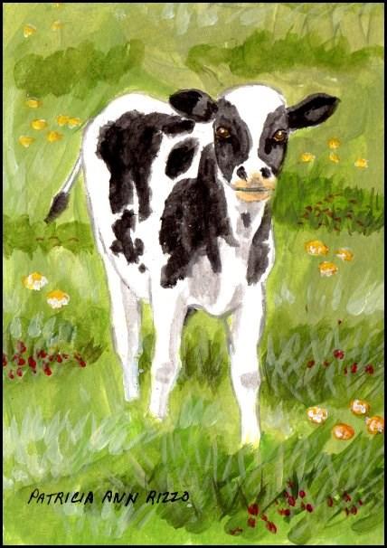 """""""A Calf"""" original fine art by Patricia Ann Rizzo"""