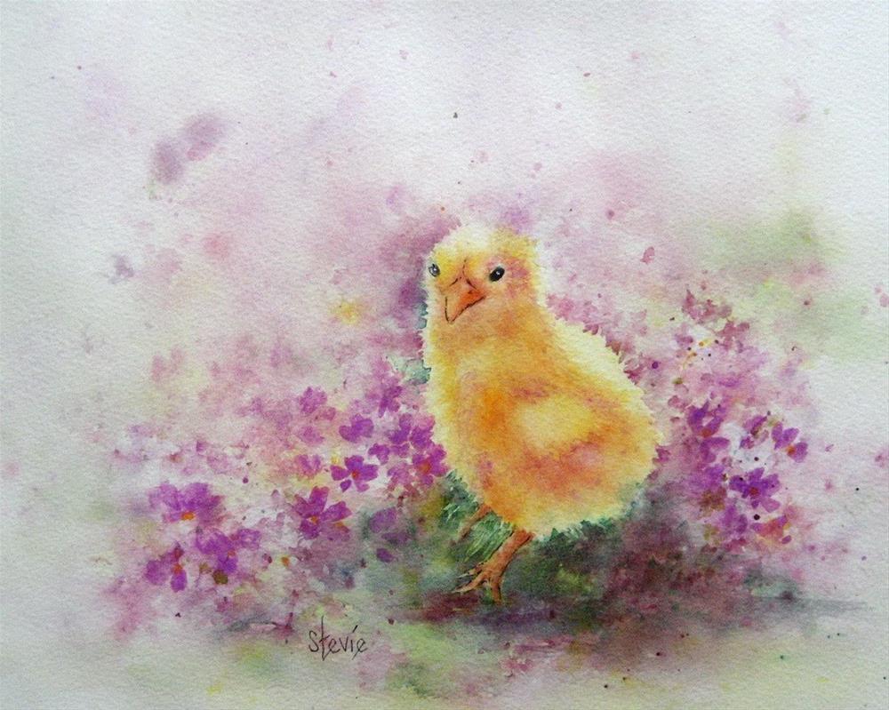"""""""Spring Chick"""" original fine art by Stevie Denny"""