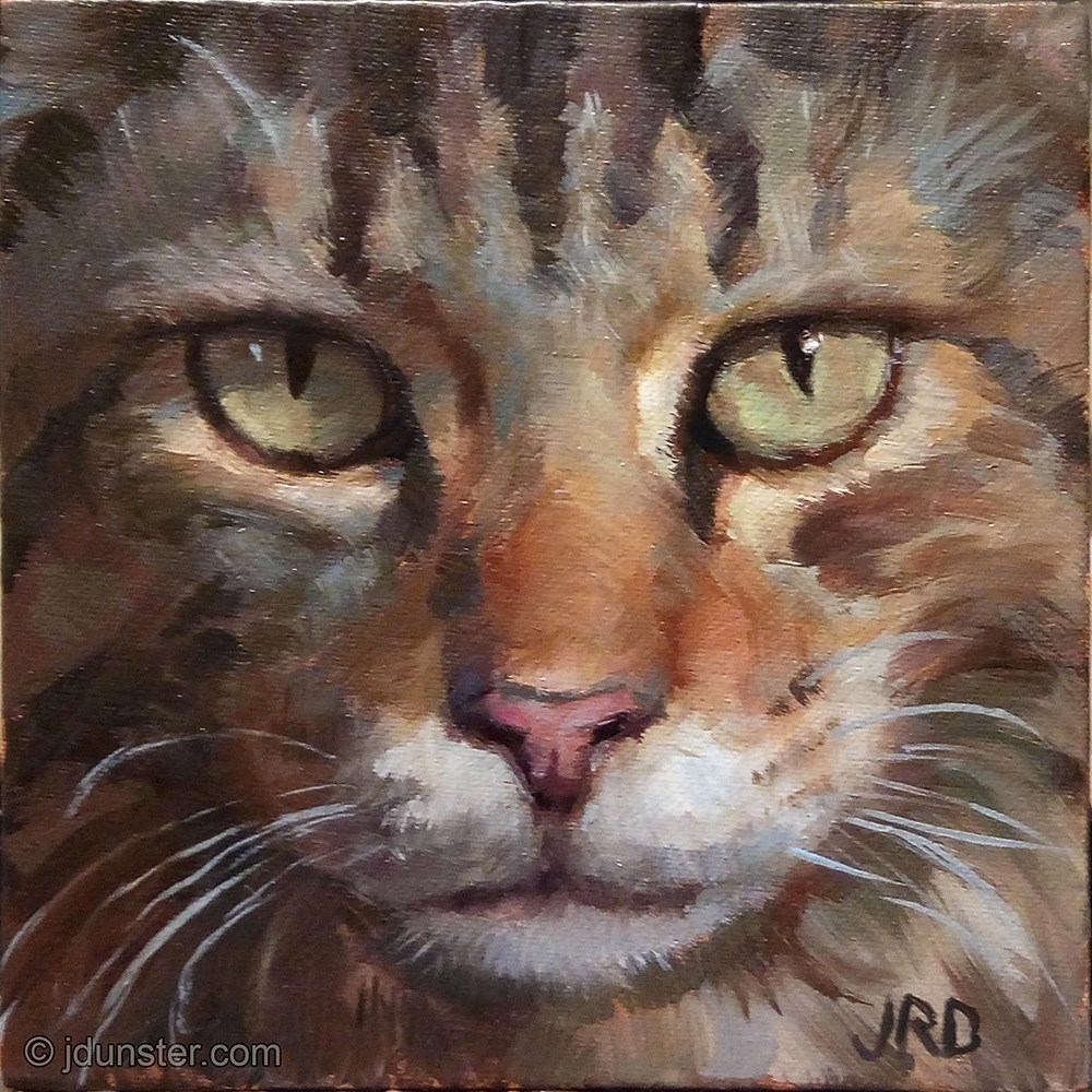 """Close-up Maine Coon"" original fine art by J. Dunster"