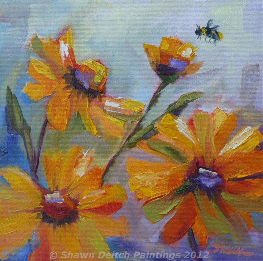 """""""Brittlebush Bee"""" original fine art by Shawn Deitch"""