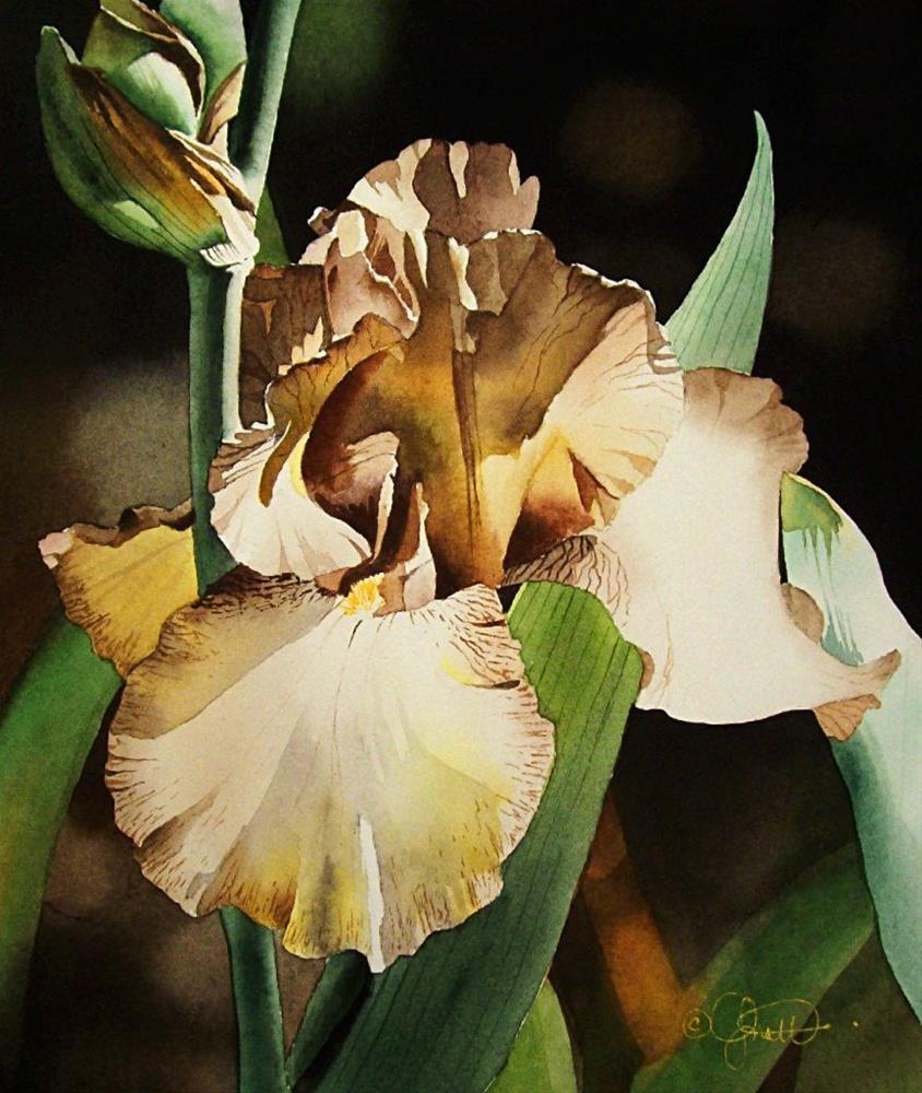 """Copper and Yellow Iris"" original fine art by Jacqueline Gnott, TWSA, WHS"