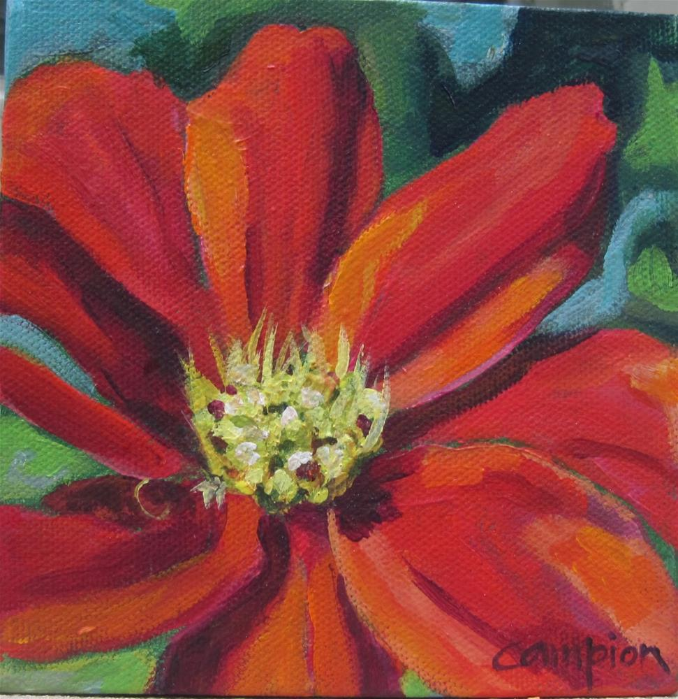 """126 Orange Cosmos"" original fine art by Diane Campion"