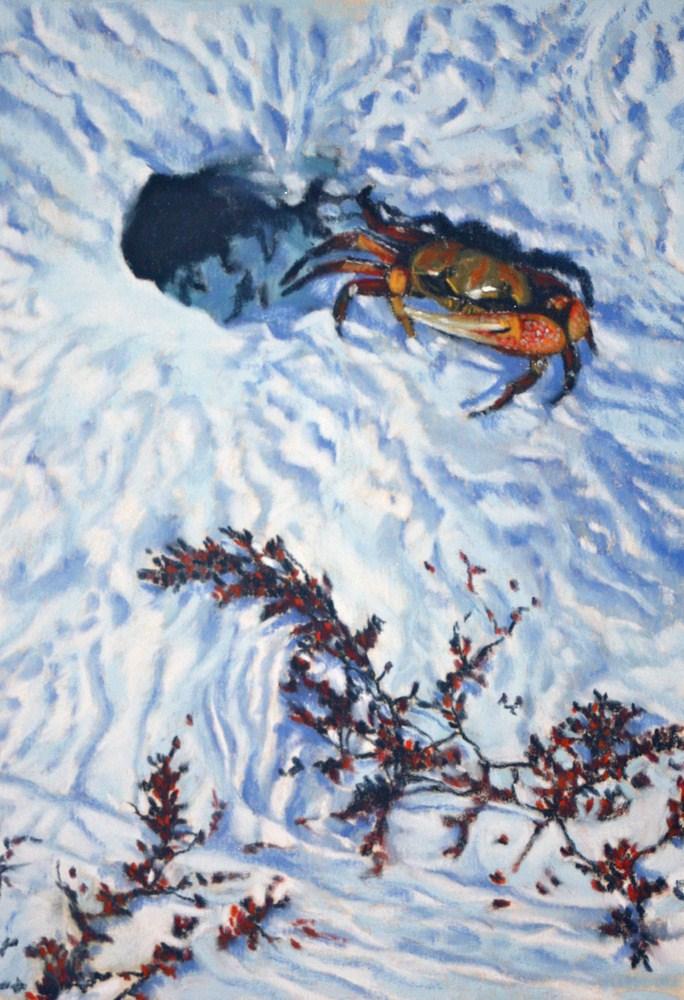 """""""Sand Dweller"""" original fine art by Jill Bates"""