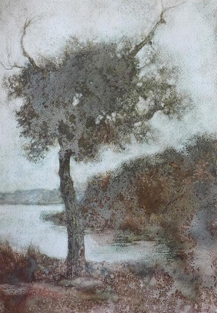 """White Rock Elder #1"" original fine art by Robyn Jorde"