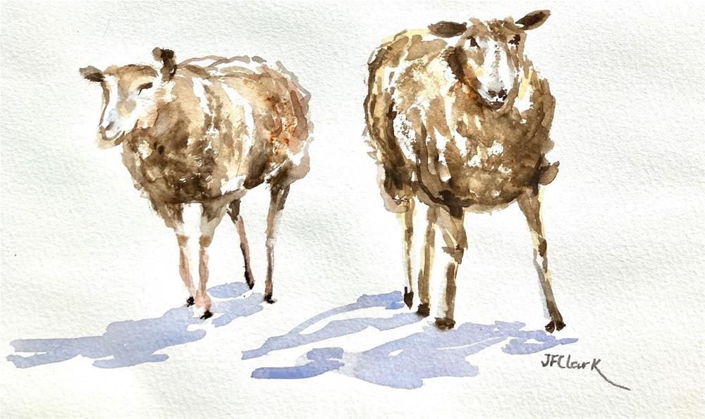 """Sheep, sketch"" original fine art by Judith Freeman Clark"