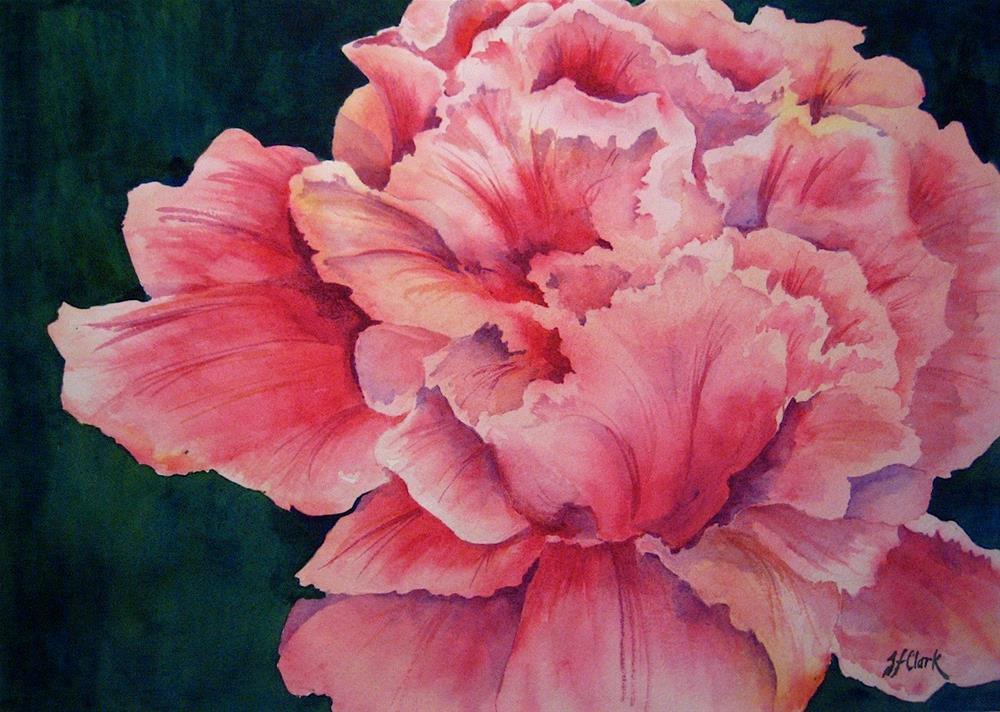 """Exuberant Rose"" original fine art by Judith Freeman Clark"