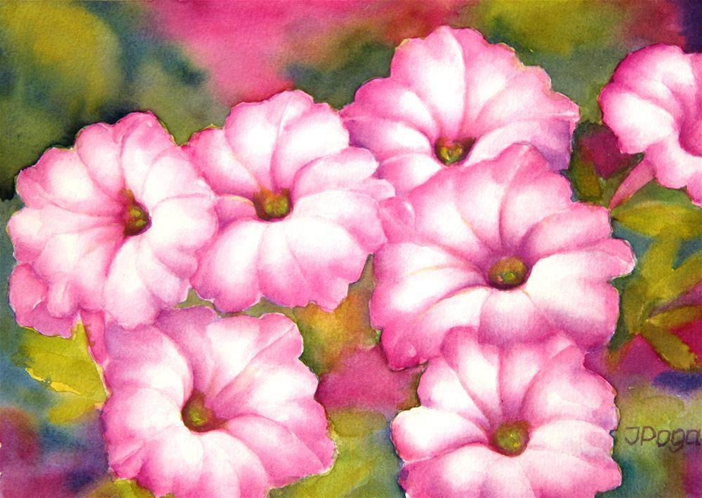 """Pink petunias"" original fine art by Inese Poga"
