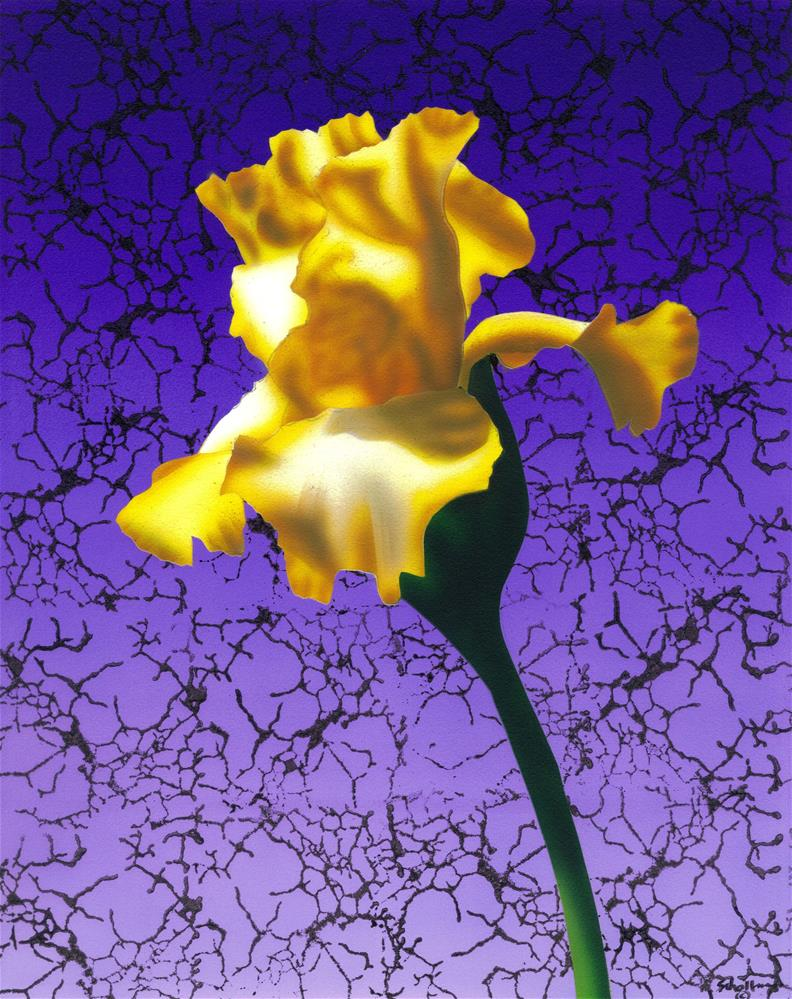 """Lemon Yellow Iris with Pattern"" original fine art by Fred Schollmeyer"