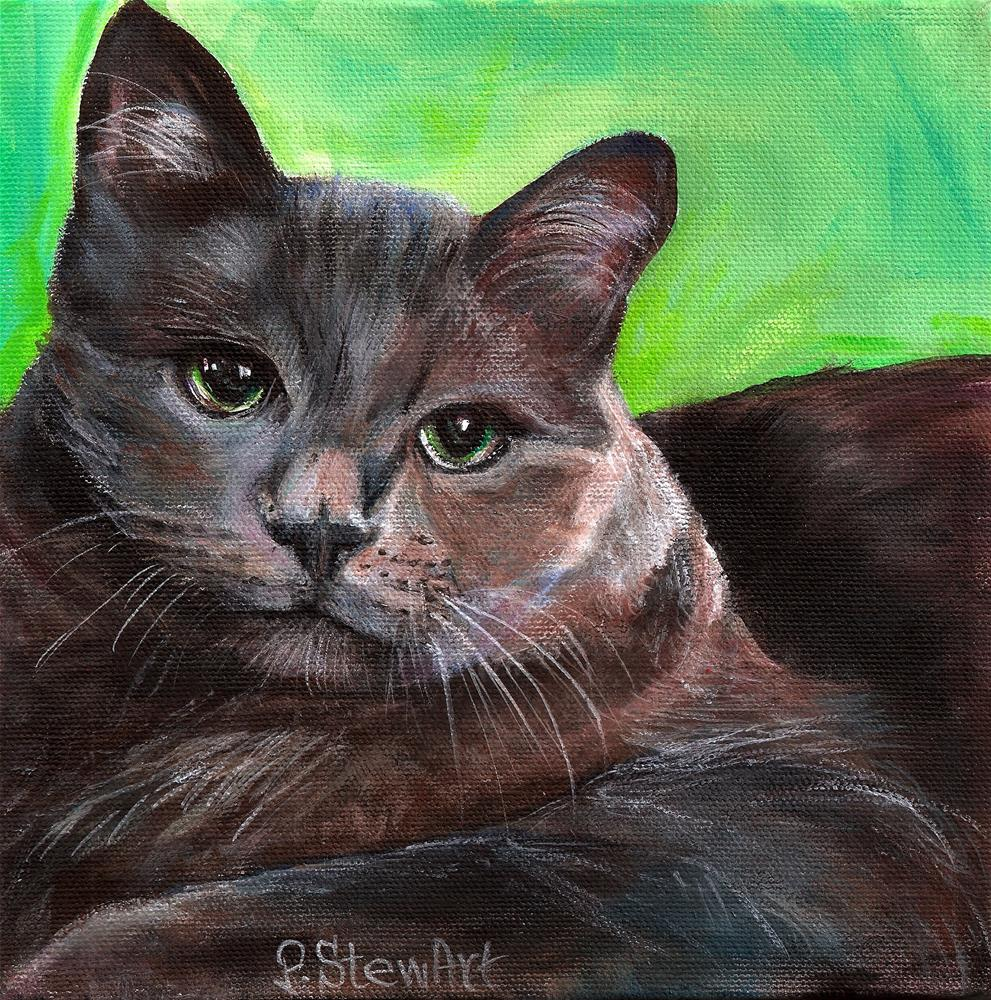 """""""8x8 Tony's Cat, acrylic on a canvas with an edge painted all around"""" original fine art by Penny Lee StewArt"""