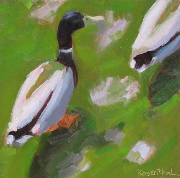 """Ducks"" original fine art by Robin Rosenthal"