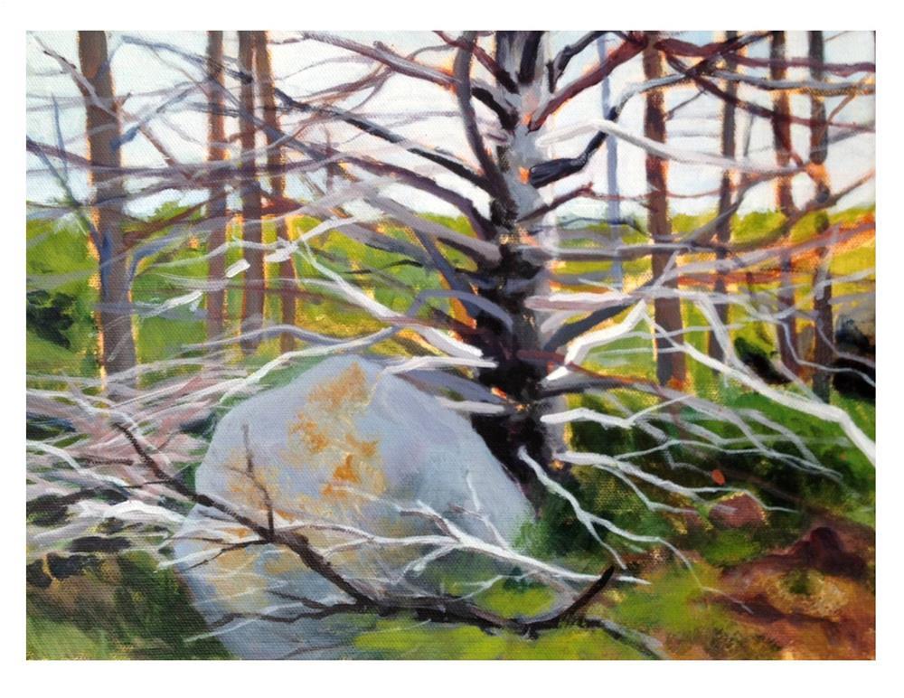 """Trail Side - Monhegan"" original fine art by Suzanne Woodward"