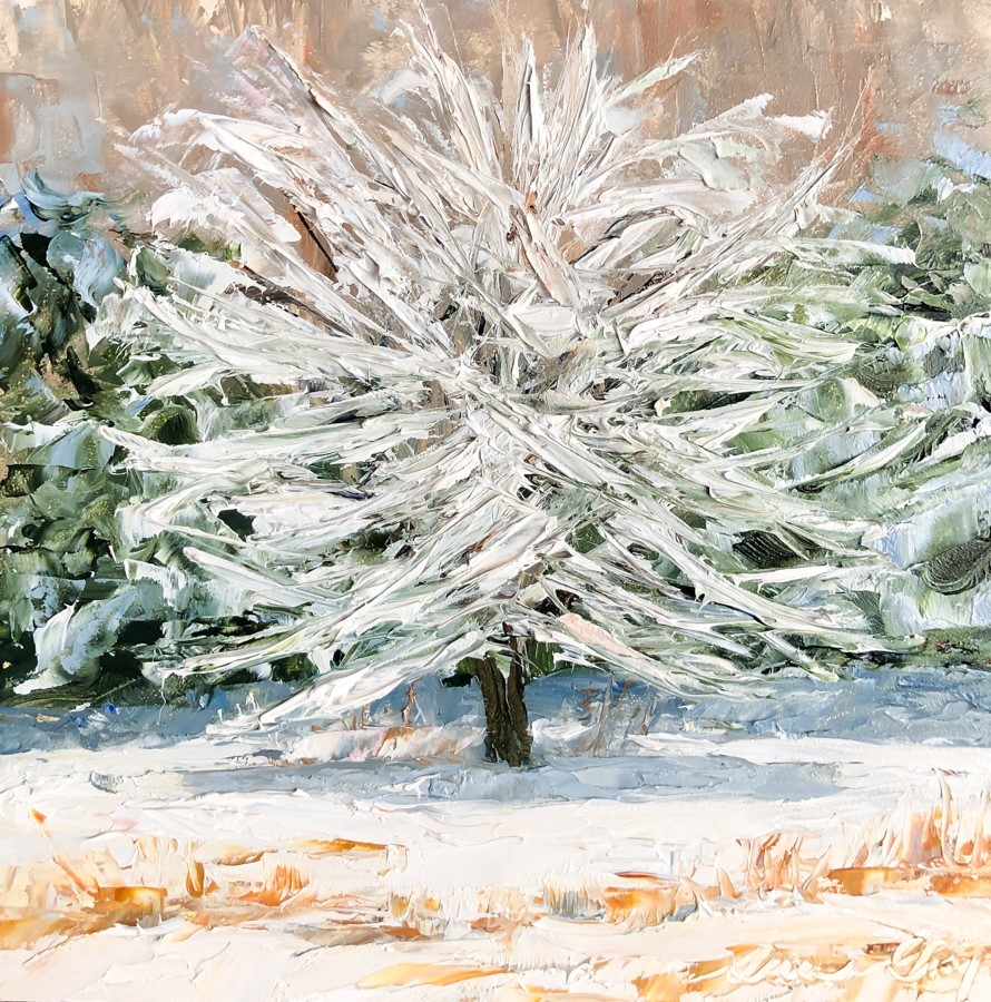 """#187 - Snow Covered Apple Tree"" original fine art by Sara Gray"