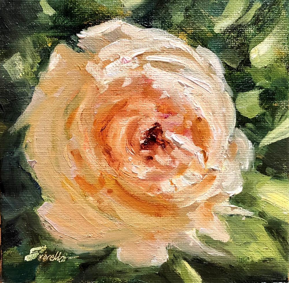 """""""Single Rose Impressions"""" original fine art by Pat Fiorello"""
