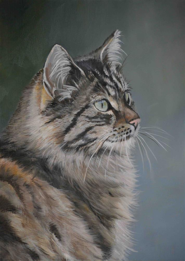 """""""Domestic Long Haired Cat"""" original fine art by Charlotte Yealey"""