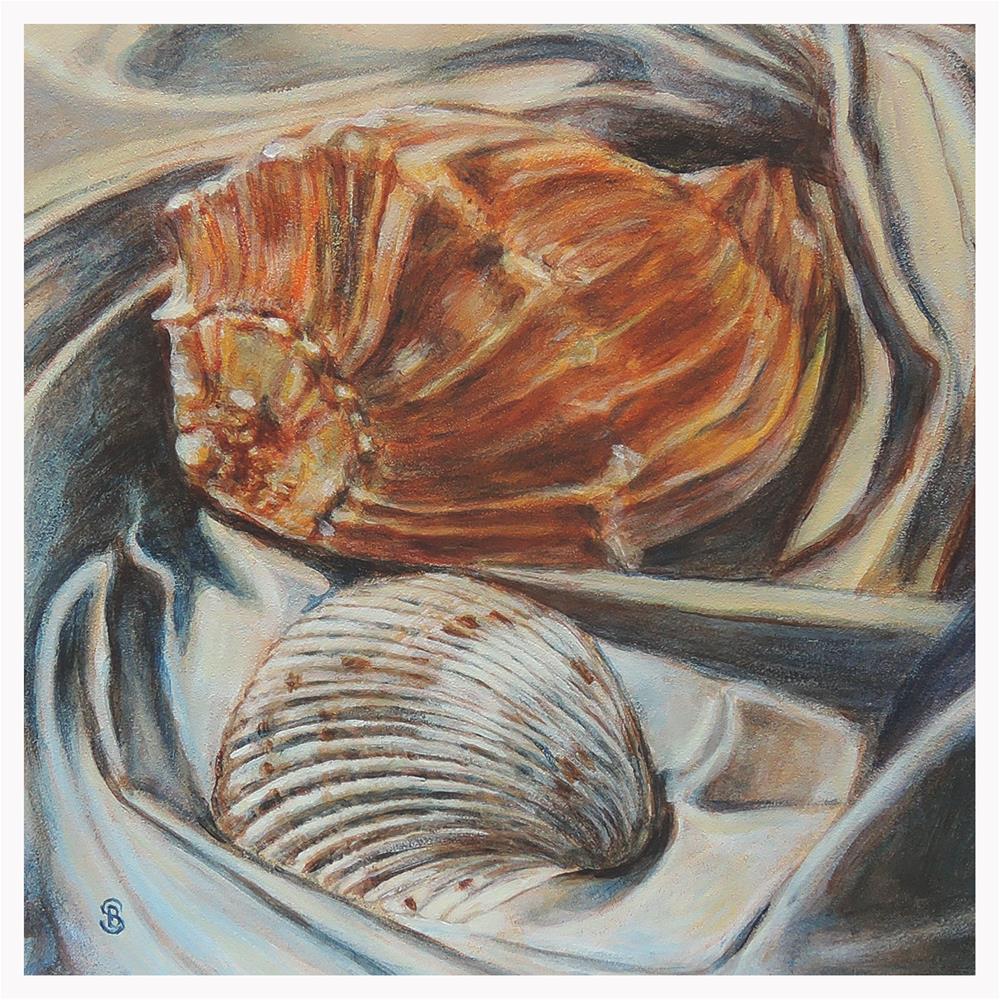 """""""Orange Whelk and Scallop Shell"""" original fine art by Belinda Scheber"""