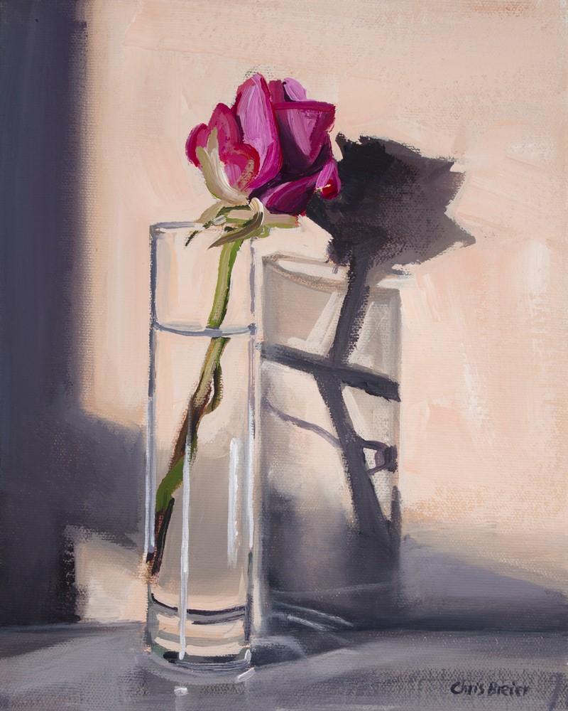 """Pink Rose"" original fine art by Chris Breier"