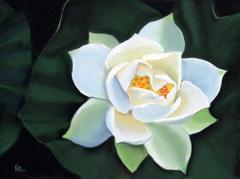 """lotus flower painting"" original fine art by Ria Hills"