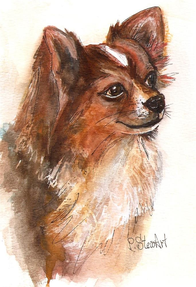 """""""5x7 Long Haired Chihuahua Brown and White Dog Pet Portrait by Penny StewArt"""" original fine art by Penny Lee StewArt"""