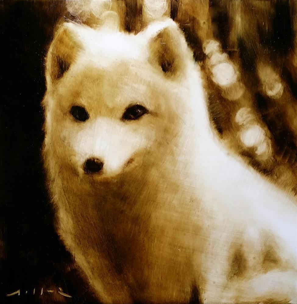 """Arctic Fox #1"" original fine art by Nathan Miller"