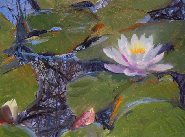 """""""Water Jewel    water lilly painting"""" original fine art by Robin Weiss"""