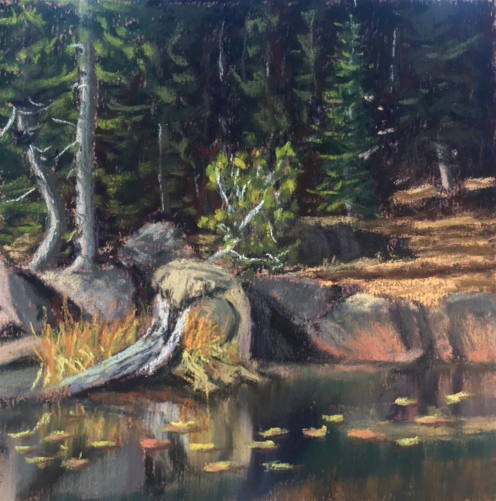"""EARLY AUTUMN AT THE POND"" original fine art by Marti Walker"