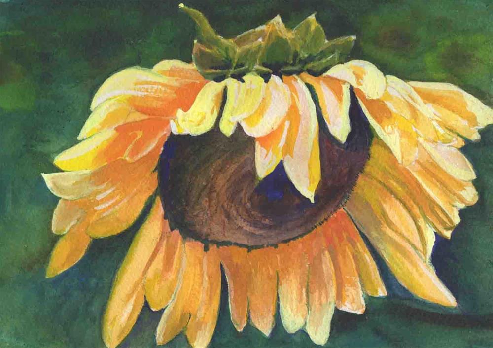 """Sunflower"" original fine art by Bunny Griffeth"