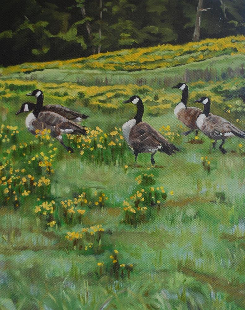 """Geese in yellow field"" original fine art by Beverley Phillips"