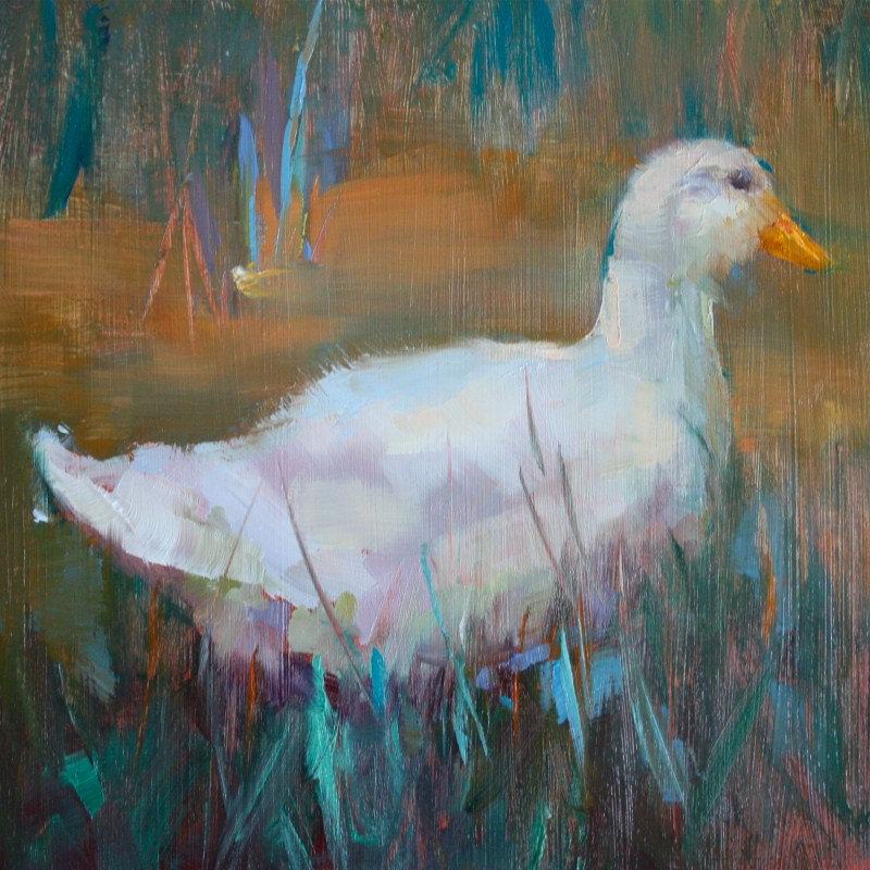 """Duck Tail"" original fine art by Pamela Sweet"