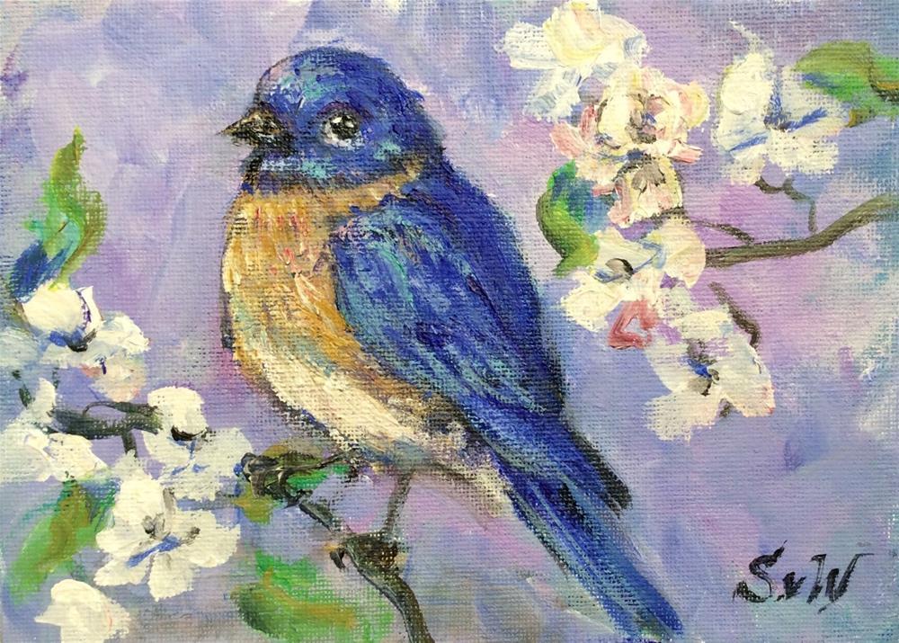"""Bluebird and apple blossoms"" original fine art by Sonia von Walter"