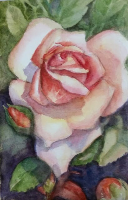 """Peach Rose"" original fine art by Wendy Starita"