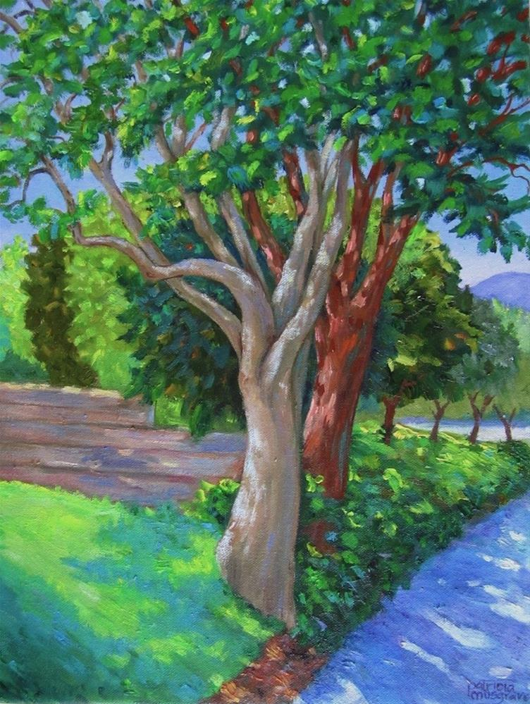 """Trees of Heaven"" original fine art by Patricia Musgrave"