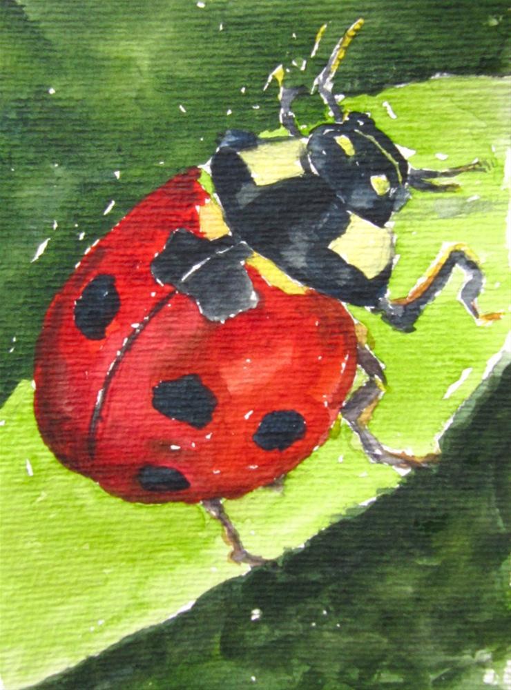 """""""My own Lady Bug"""" original fine art by Steinunn Einarsdottir"""