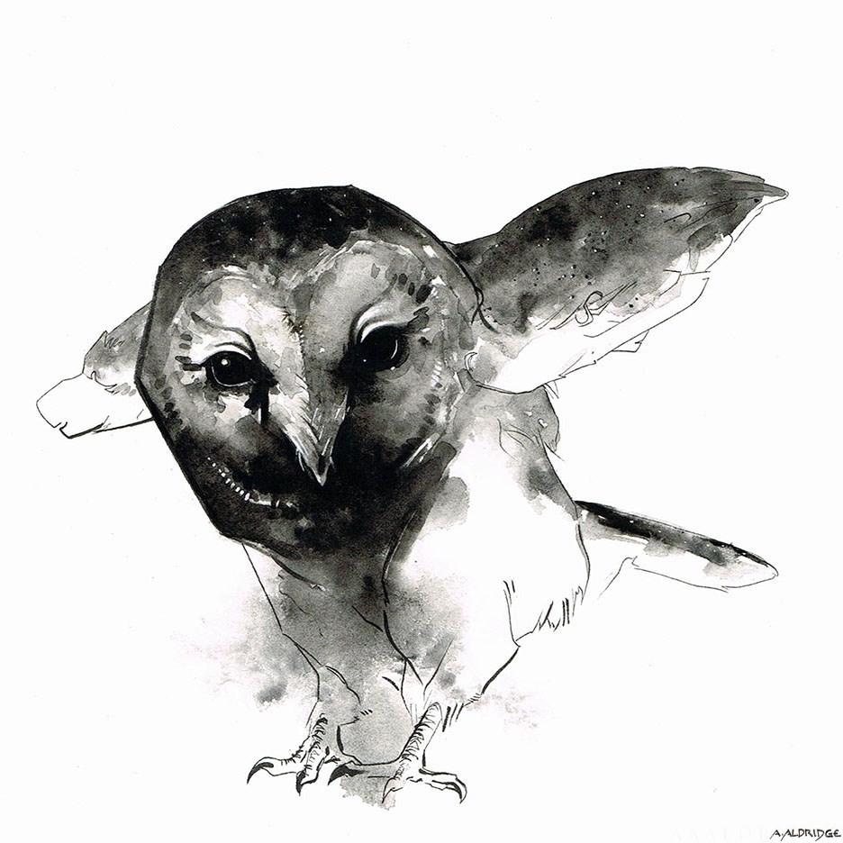 """Barn Owl I"" original fine art by April Aldridge"