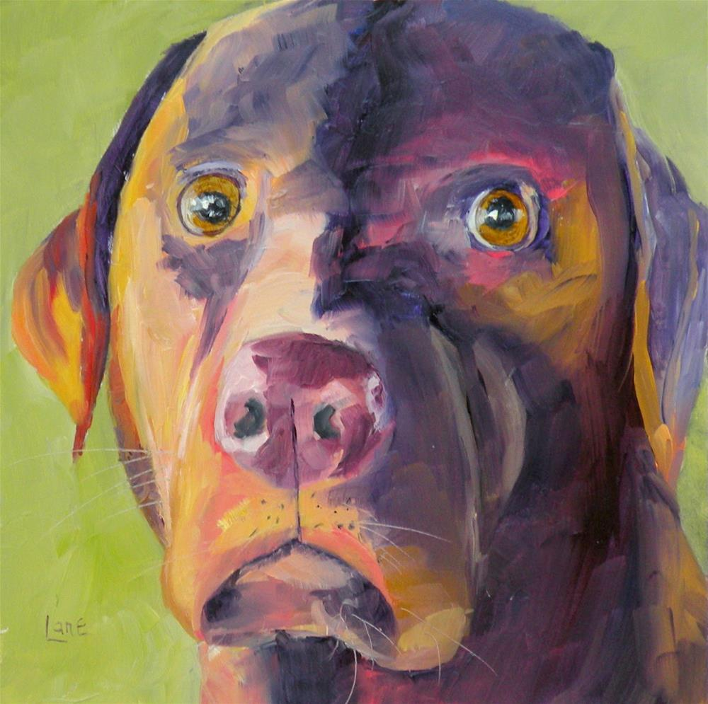 """KONA 73/101 OF 101 PET PORTRAITS IN 101 DAYS © SAUNDRA LANE GALLOWAY"" original fine art by Saundra Lane Galloway"