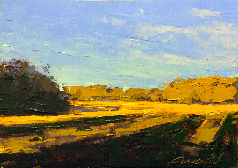 """""""Fields in Spring Light"""" original fine art by Mary Gilkerson"""
